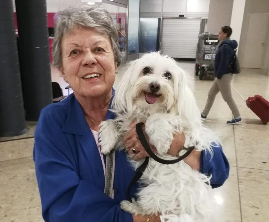 Un petit bichon retrouve sa maîtresse à l'aéroport de Genève